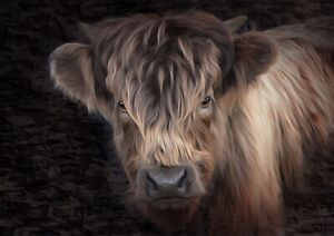 highland cow Abstract print painting limited edition signed