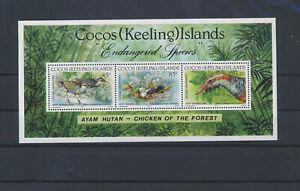 LN50895 Cocos Island animals fauna flora birds good sheet MNH