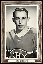 1964-1967 BEEHIVE GROUP 3 JIM ROBERTS EX+ MONTREAL CANADIENS HOCKEY PHOTO