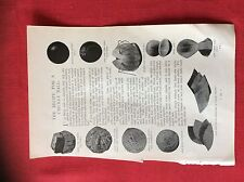 m2n ephemera 1880s article how a cricket ball is made