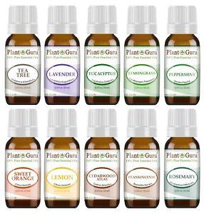 Essential Oil Set 10 - 10 ml. Sampler Kit 100% Pure Therapeutic Grade Oils Lot