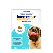 Interceptor Large 22-45KG Blue