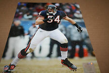 Chicago Bears Brian Urlacher Unsigned 8X10 Photo Pose 2