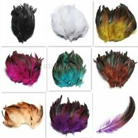 "100pcs Beautiful Rooster Pheasant Tail Feathers Long Costume Decoration 5-7"" UK"