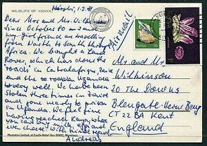 Kenya 1981 postcard Nairobi to UK