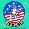 TOMCAT vF14 US MILITARY DECAL STICKER VINTAGE AMERICAN AIR FORCE DECAL STICKERS