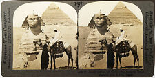 Keystone Stereoview SPHINX & Great Pyramid, Giza, EGYPT from 1930's T600 Set # A