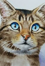 ACEO Original Art Card Cat Tabby Very Detailed Realistic Watercolor Free Ship