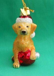 Noble Gems Glass Christmas Tree Decoration Dog Hat Yellow Labrador