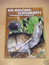 "NTV Art for Art ""Die Moschus-Schildkröte"""