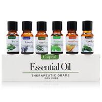 Essential Oil Gift Set Sampler Kit 6 - 10 ml 100% Pure Therapeutic Grade Lot