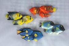 8cm TROPICAL FISH FRIDGE MAGNETS - SET OF 12 - Includes Blue Tang - Dory Style