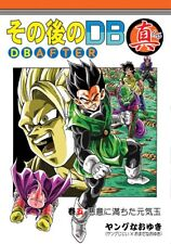 New Doujinshi DRAGON BALL  DRAGON BALL AFTER SHIN 5 Japan