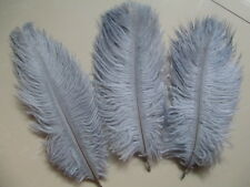 Wholesale 10-100 PCS ostrich feather 6 - 24 inches /15-60 cm a variety of colors