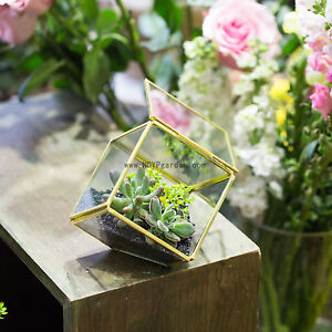 Copper Brass Squares Inclined Cube Geometric Terrarium Wedding Centerpiece Gift
