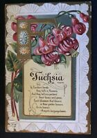 Fuchsia~Flower Meaning~Vintage Antique Embossed Nash Greetings Postcard-a-917