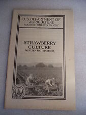 1925 Strawberry Culture Western US Farmers' Bulletin #1027 US Dept Agriculture