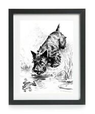 Scottish Terrier Scottie Dog Picture Art Print Poster Gift Vintage Reprint A4