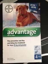 ADVANTAGE blue 4 pack dogs over 55 lbs kills fleas and lice
