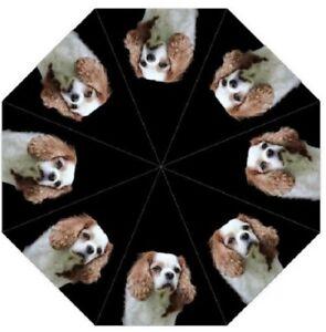 Cavalier King Charles Spaniel Dog Folding Umbrella Brolly - Auto Open +Pouch Pet