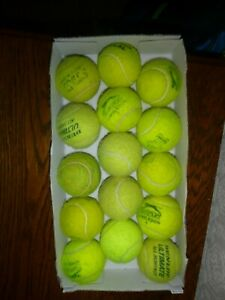 Used tennis balls (ideal for dogs!)