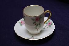 Silesia Bavaria Hand Painted Tea Cup & Saucer (36)