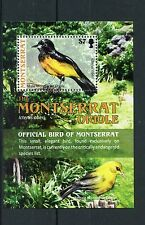 Montserrat 2009 MNH Montserrat Oriole 1v S/S Birds Trees Stamps