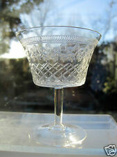 "Pall Mall Glass Child's Champagne Glass 3.3/4"" High Lady Hamilton Etched Border"