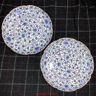 PAIR Japanese 18thC Edo Arita Ko-Imari Sometsuke Blue & White Porcelain Plates