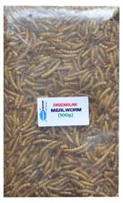 Premium Freeze Dried Mealworm Tropical Fish Food - Cichlid etc [100g]