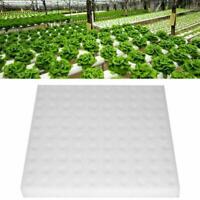 100x/Set Hydroponic Sponge Plant Gardening Tool Seedling Sponges For Greenh F1D5