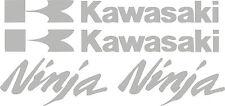 Kawasaki Decal monster SILVER Sticker Motorcycle ninja 250r 650 300 zx 636 1000
