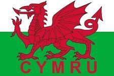 FLAG FRIDGE MAGNET - WALES CYMRU