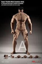 1/6 TBLeague Phicen Flexible Male Muscle Seamless Body w/Steel Skeleton M35