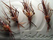 Irideus Trout Flies Dobson Fly Larvae Dragon Fitz Helgramite fishing fly Fish