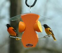 Kettle Moraine Recycled Curved Oriole Orange Fruit Bird Feeder #8336
