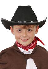 Adult Fancy Dress Black Cowboy Hat Wild West H38 403