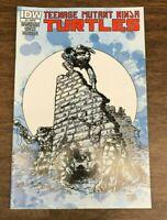 TEENAGE MUTANT NINJA TURTLES 3 JETPACK COMICS EXCL VARIANT Eastman Laird TMNT