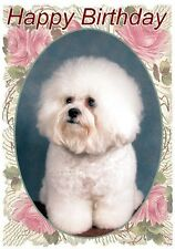 Bichon Frise Dog Design A6 Textured Birthday Card BDBICHON-6p by paws2print