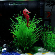 Cute Colorful Silicone Material Artificial Aquarium Sea Horse Ornament Fish Tank