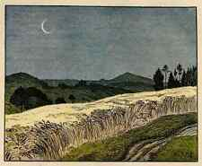 MONDSICHEL über WEIZENFELD -  Edmund STEPPES - 1910 Jugendstil Zinkätzung