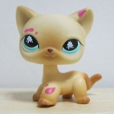 Littlest Pet Shop Animals LPS #816 Short Hair Kitty Cat Figure Toys W1