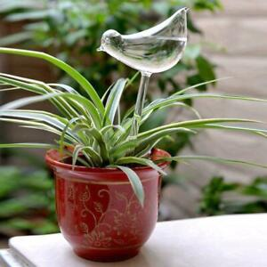 Glass Plant Flowers Water Feeder Self Watering Bird Plant Waterer Device New
