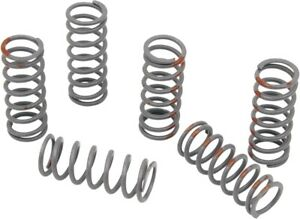 KG Powersports High Performance Clutch Spring Set #KGS-020