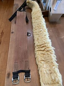 Nylon Lunging Surcingle with Fleece Padding,