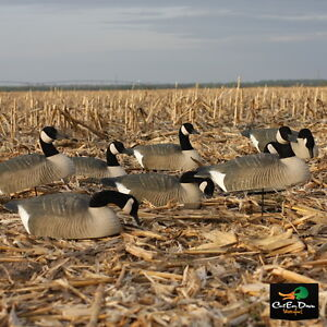 NEW AVERY GREENHEAD GEAR GHG CANADA GOOSE SHELL FIELD DECOYS 6 PACK 1/2 DOZEN