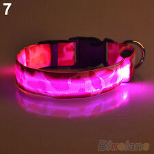 Fancy Pets Dog LED Lights Waterproof Flash Night Safety Collar Without Battery