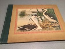 Rex Brasher's Treasury of Bird Paintings 162 Full Color Plates L McGaw NY 1967