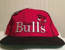 Vintage Chicago BULLS Snapback Hat The Game Collectors Series NWT 2600/6000