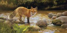 RED FOX ART PRINT Morning at Honey Creek by Bonnie Marris Wildlife Poster 13x19